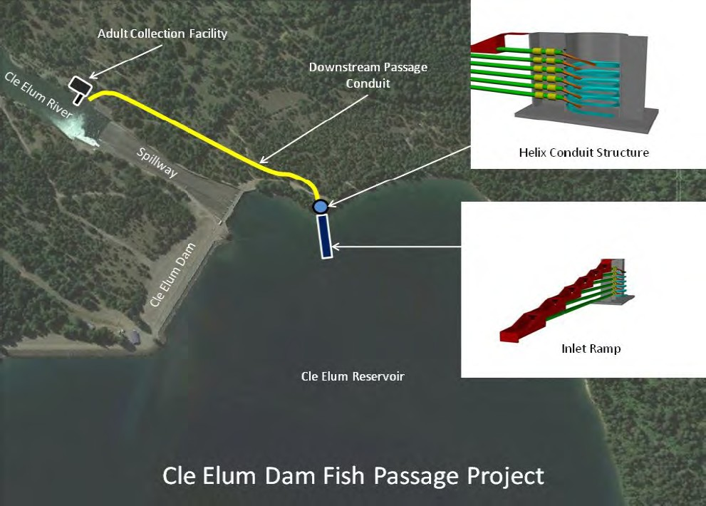 Cle Elum Dam  Fish Passage Facilities