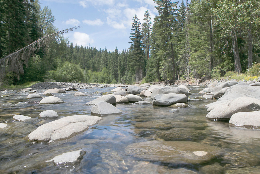Little Naches low water