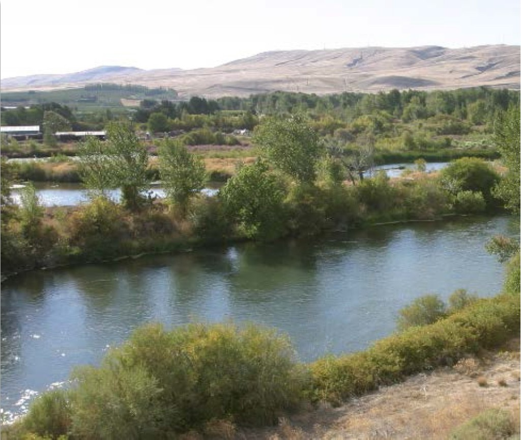 Yakima River Picture Oct. 23 11.19