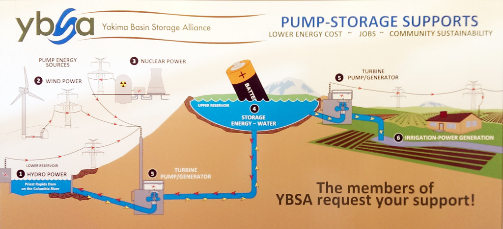 ybsa infographic